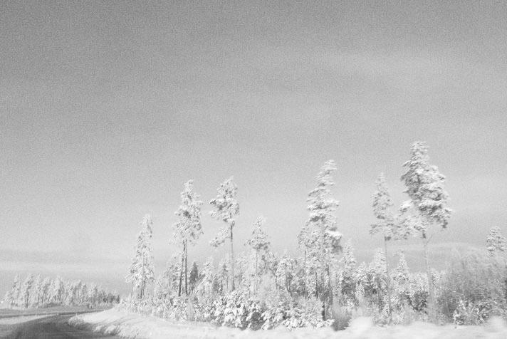 sabina-tabakovic-snow-sweden